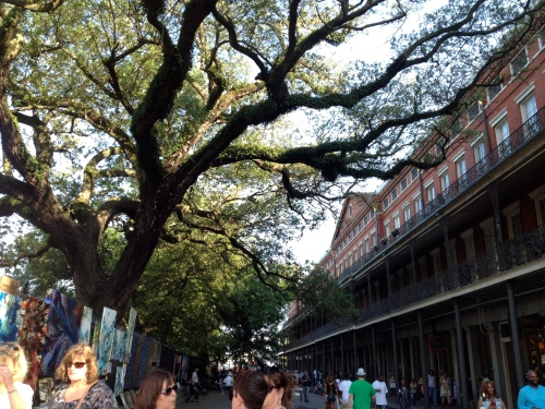Magnificent trees rise above the artwork hanging on the Jackson Square fence.