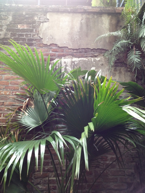 Classic, lovely New Orleans decay in the Napoleon House  courtyard.