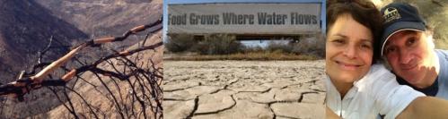 droughtbanner 1