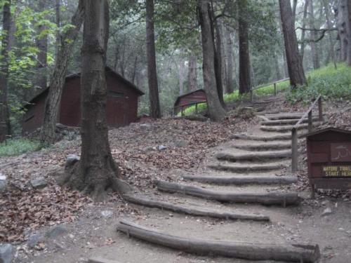 CampSturtevant-3613