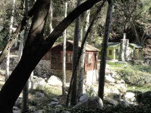 Contemporary-cabin-scene1-600x450
